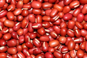 紅豆,婦科良品